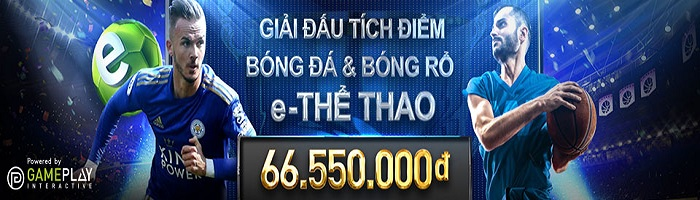 the thao w88